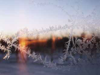 cold dawn fog frost