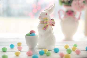 bunny candy celebration chocolate