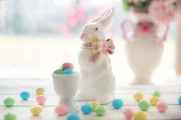 bunny candy celebration chocolate