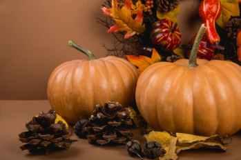 agriculture autumn background decoration